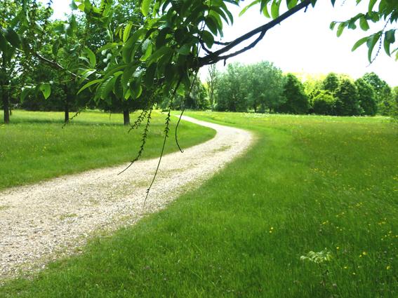 Balade à l'arboretum